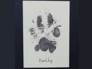 Paw Print Workshop; The Abbey Studio